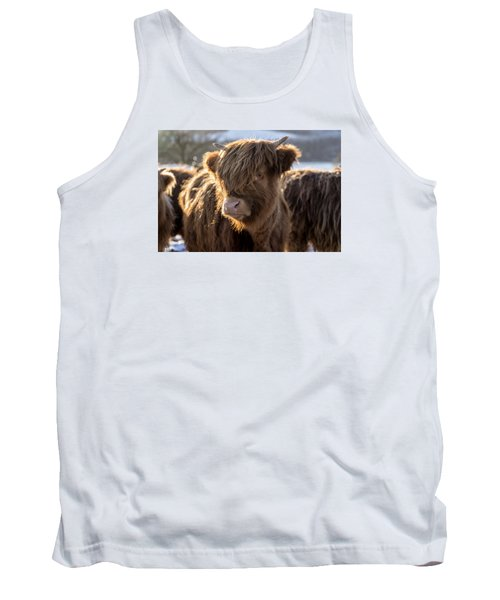 Highland Baby Coo Tank Top by Jeremy Lavender Photography