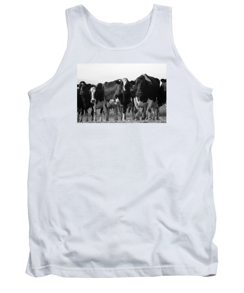 Curious Holsteins Tank Top