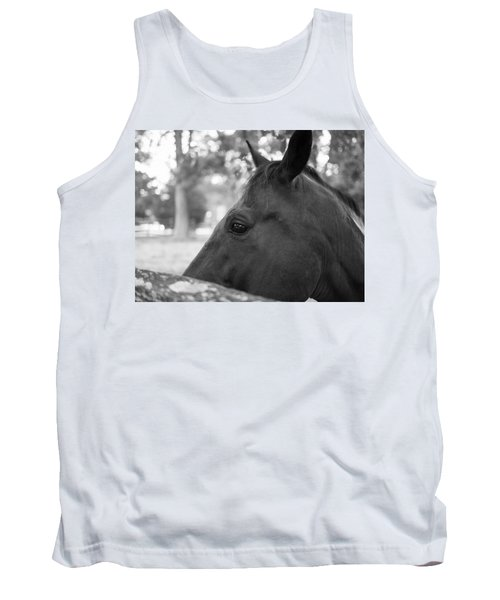 Horse At Fence Tank Top