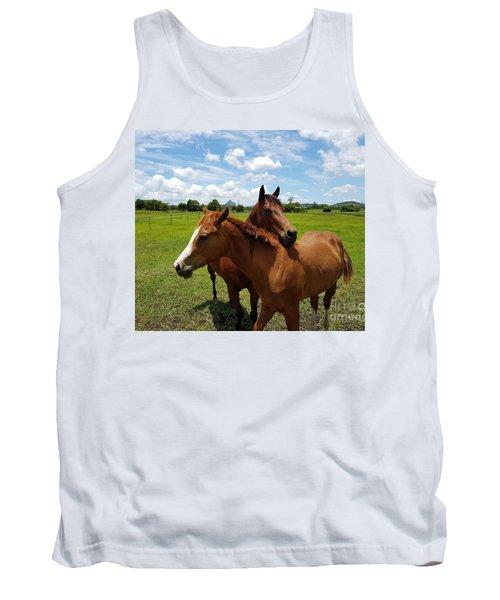 Horse Cuddles Tank Top