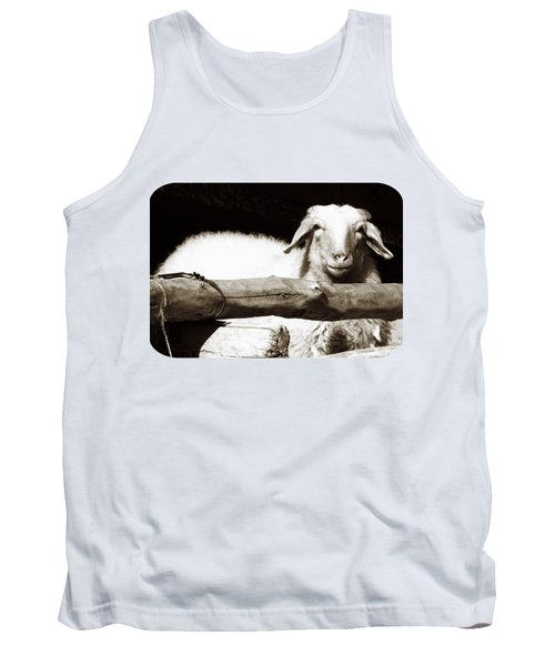In The Pen Tank Top by Ethna Gillespie