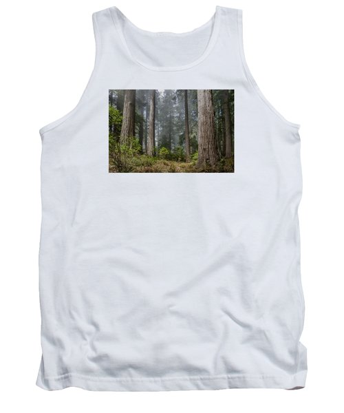 Into The Redwood Forest Tank Top by Greg Nyquist