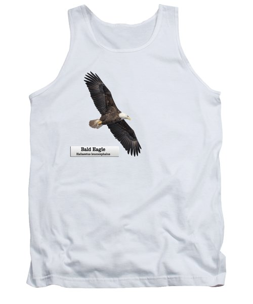 Isolated Bald Eagle 2018-1 Tank Top