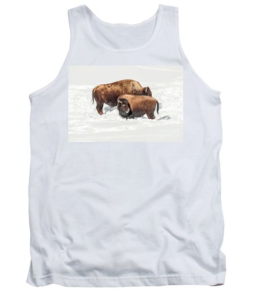 Juvenile Bison With Adult Bison Tank Top by Sue Smith
