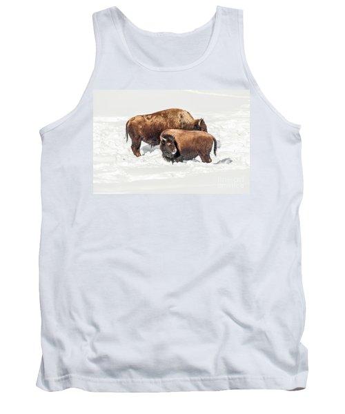 Juvenile Bison With Adult Bison Tank Top