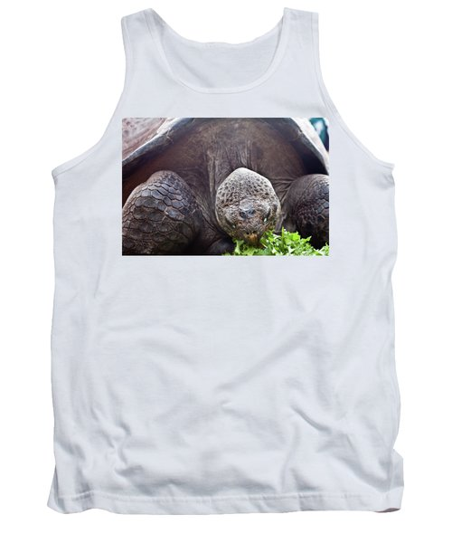Tank Top featuring the photograph Life Begins At 60 For Vegetarian by Miroslava Jurcik