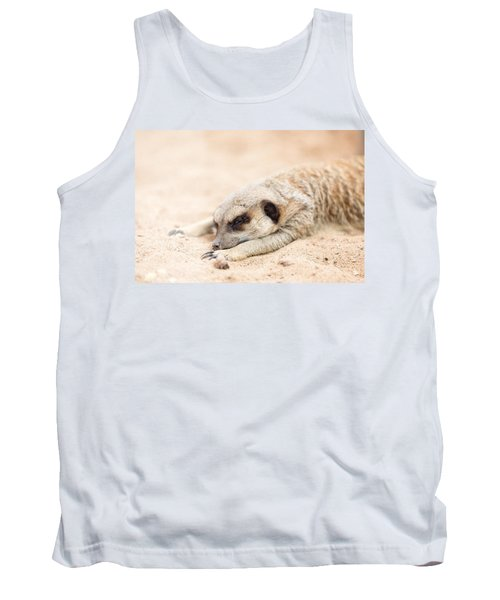 Long Day In Meerkat Village Tank Top