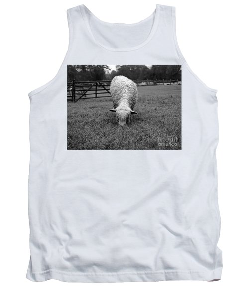 Longwool Sheep Grazing Tank Top