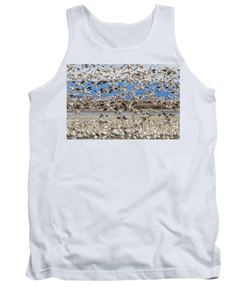 Looking For A Place To Land Tank Top