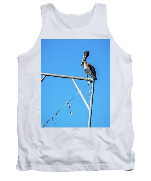 Louisiana's State Bird Tank Top by Andy Crawford