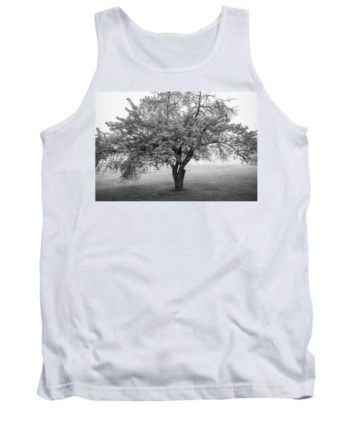 Tank Top featuring the photograph Maine Apple Tree In Fog by Ranjay Mitra