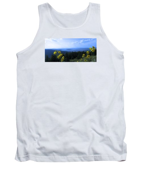 Maine Mountain Vistas Tank Top by Mike Breau