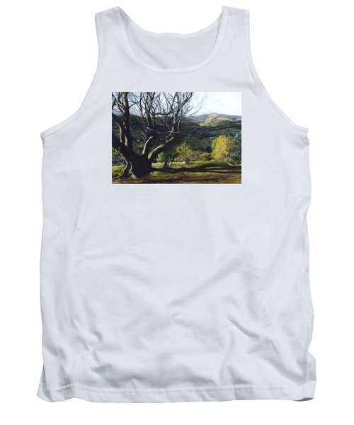 Moel Famau From Loggerheads Tank Top by Harry Robertson