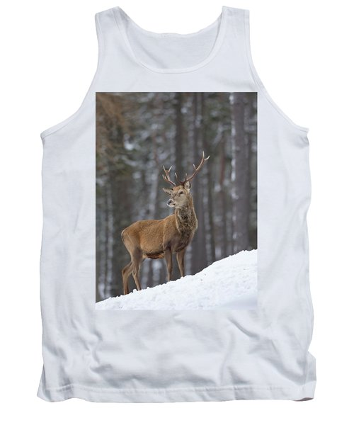 Monarch Of The Woods Tank Top