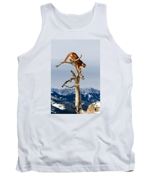 Mountain Lion In Tree Tank Top
