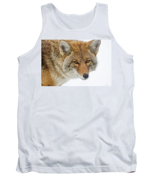 Mr. Coyote Tank Top