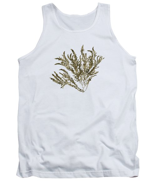 Tank Top featuring the mixed media Ocean Seaweed Plant Art Ptilota Sericea Square by Christina Rollo