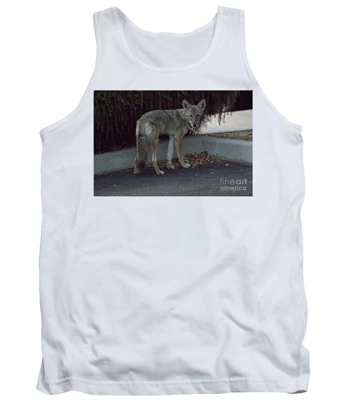 On The Prowl 1 Tank Top by Anne Rodkin