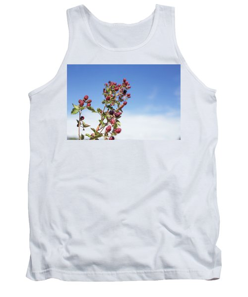 Organic Handpicked Home Orchard Raspberries,blackberries From Bu Tank Top by Jingjits Photography