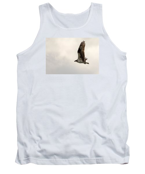 Osprey Fly By Tank Top