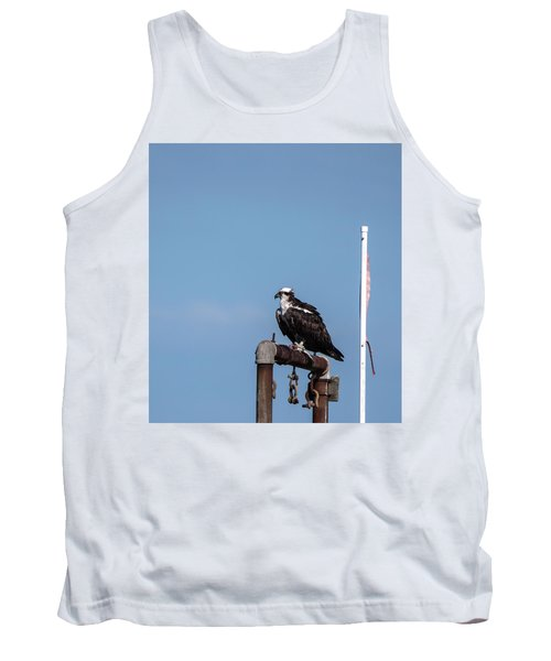 Osprey Having Lunch Tank Top