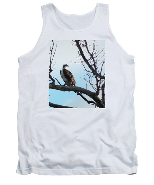 Osprey In Tree Tank Top