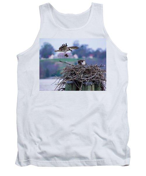 Osprey Nest Building Tank Top