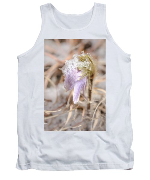 Past Pasque Tank Top
