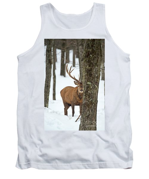 Tank Top featuring the photograph Peekaboo.. by Nina Stavlund