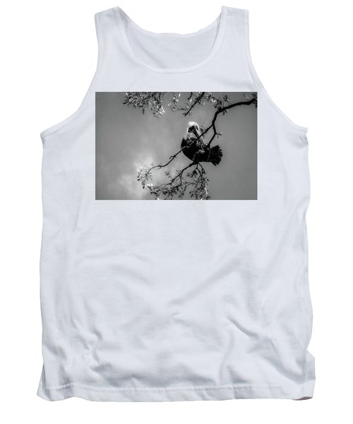 Pelican Connection Tank Top