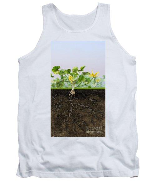 Pilewort Or Lesser Celandine Ranunculus Ficaria - Root System -  Tank Top