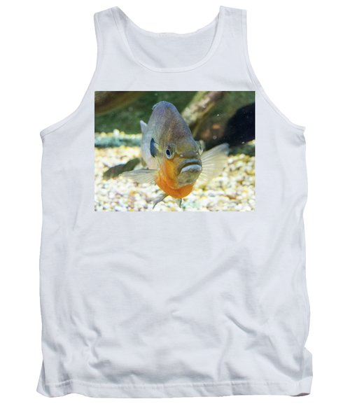 Piranha Behind Glass Tank Top