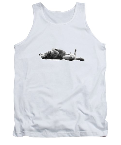 Playful Gray Wolf Photo Tank Top