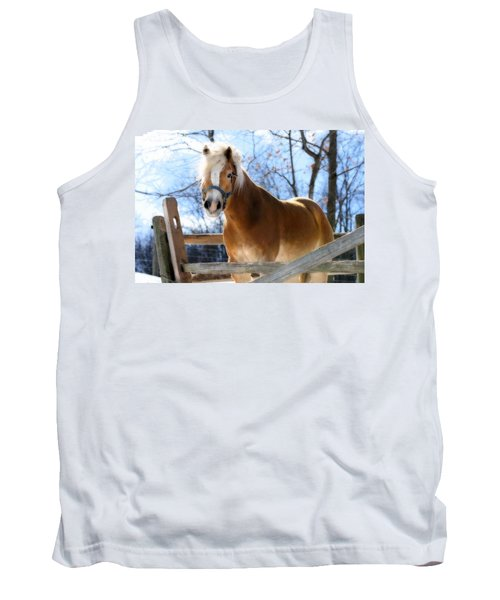 Portrait Of A Haflinger - Niko In Winter Tank Top by Angela Rath
