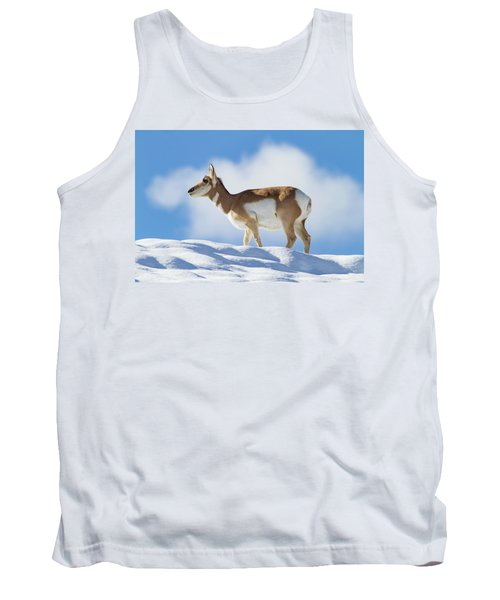 Pronghorn Doe On Snowy Ridge Tank Top
