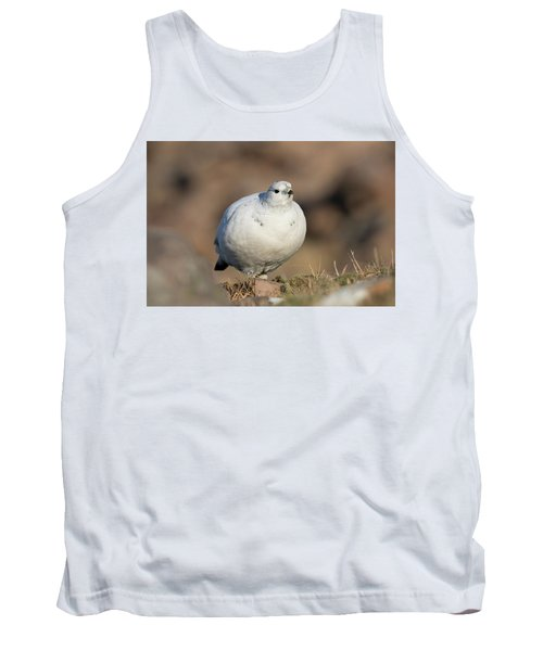 Ptarmigan Going For A Stroll Tank Top