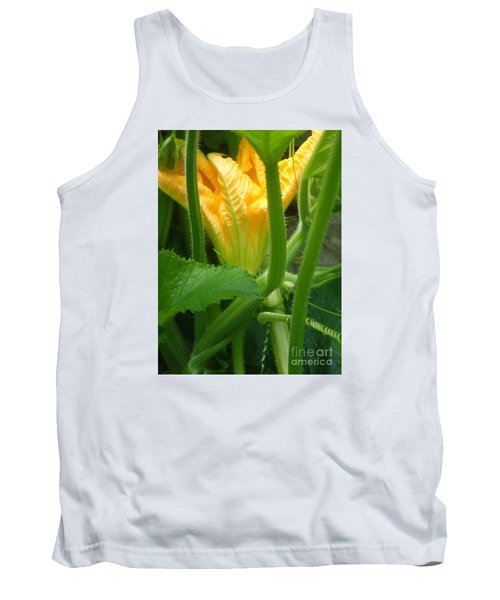 Tank Top featuring the photograph Pumpkin Blossom by Christina Verdgeline