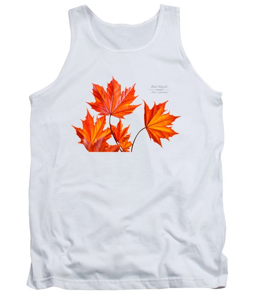 Red Maple Tank Top by Christina Rollo