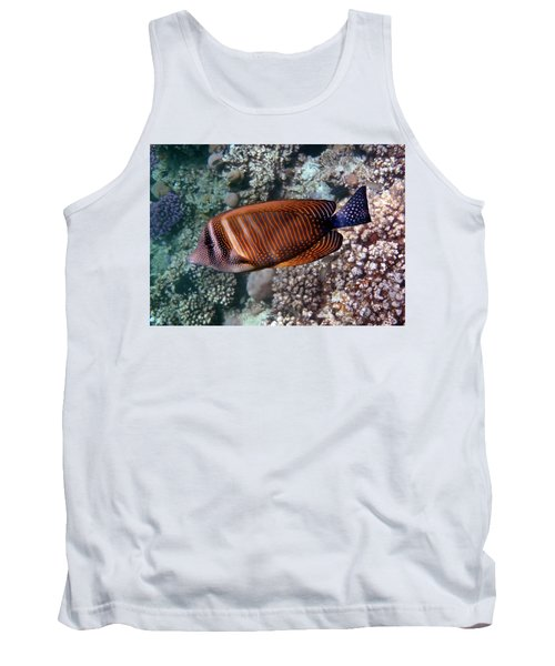 Red Sea Sailfin Tang 3 Tank Top