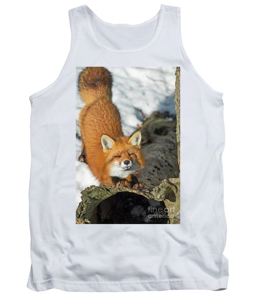 Tank Top featuring the photograph Reynard The Fox by Nina Stavlund