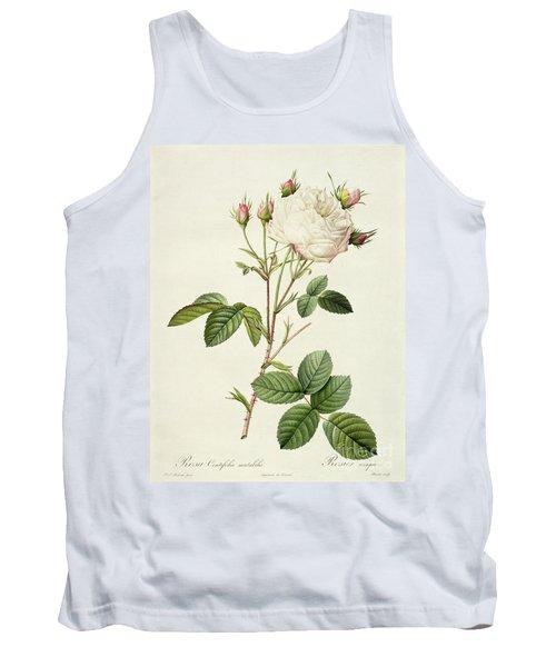 Rosa Centifolia Mutabilis Tank Top