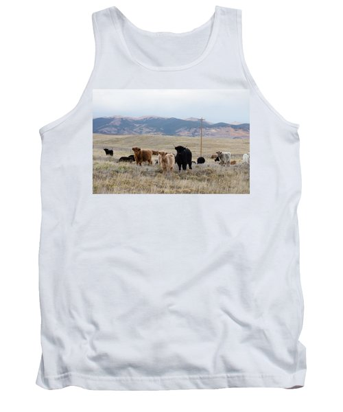 Shaggy-coated Cattle Near Jefferson Tank Top by Carol M Highsmith