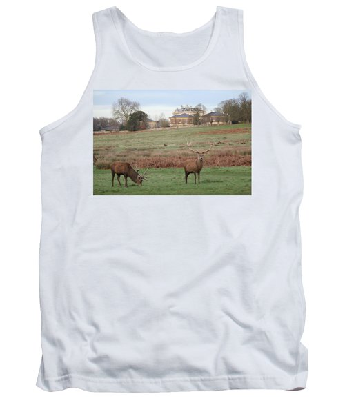 Stags In Richmond Park Tank Top