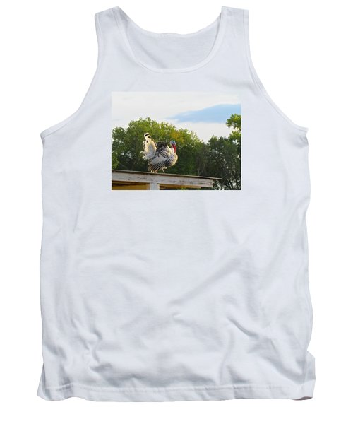 Tank Top featuring the photograph Strutting His Stuff by Brenda Pressnall