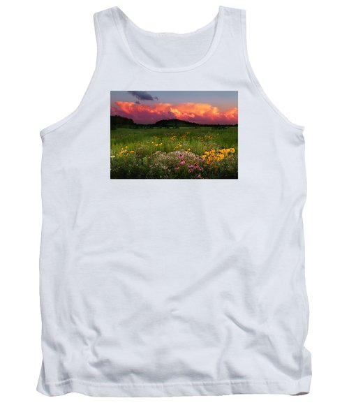 Summer Majesty Tank Top by Rob Blair