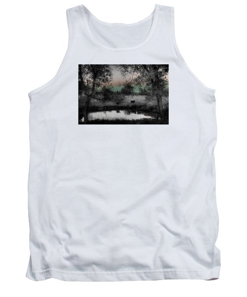 Sunset Over The Pond Tank Top by Karen McKenzie McAdoo