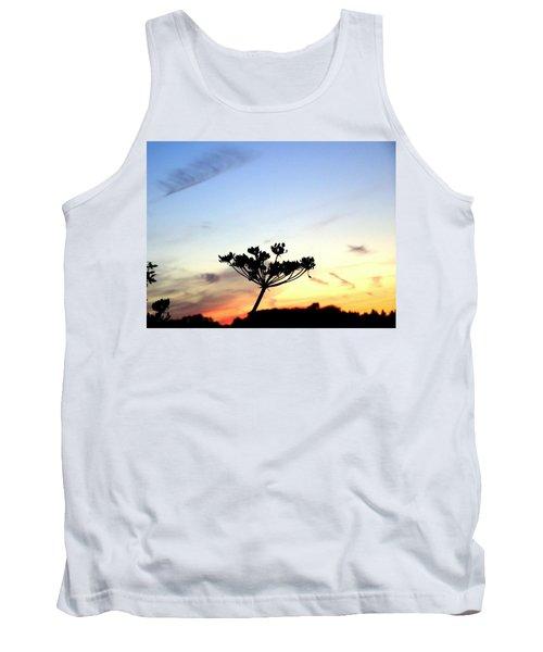Sunset Seedhead Silhouette  Tank Top
