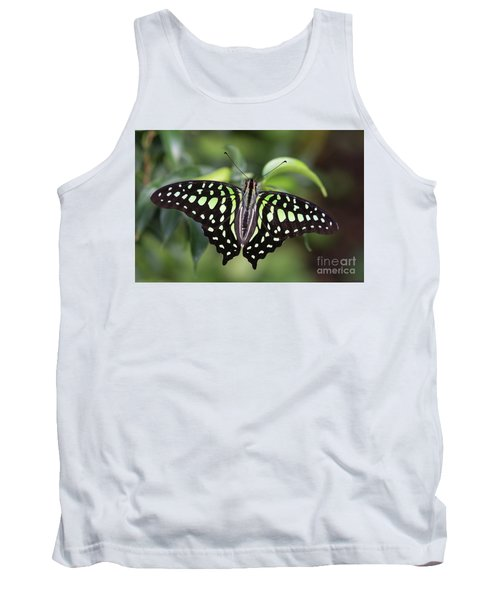 Tailed Jay Tank Top