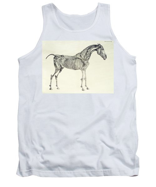 The Anatomy Of The Horse Tank Top