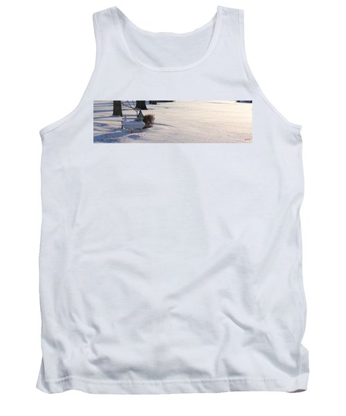 The Bird House Bench Tank Top